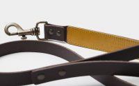 dog-leash-dark-yellow-detail-buckle