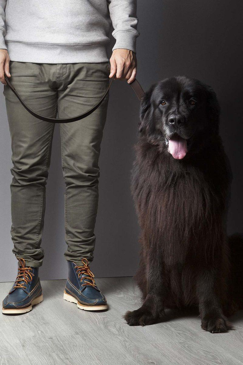 Leather Dog Leash Black