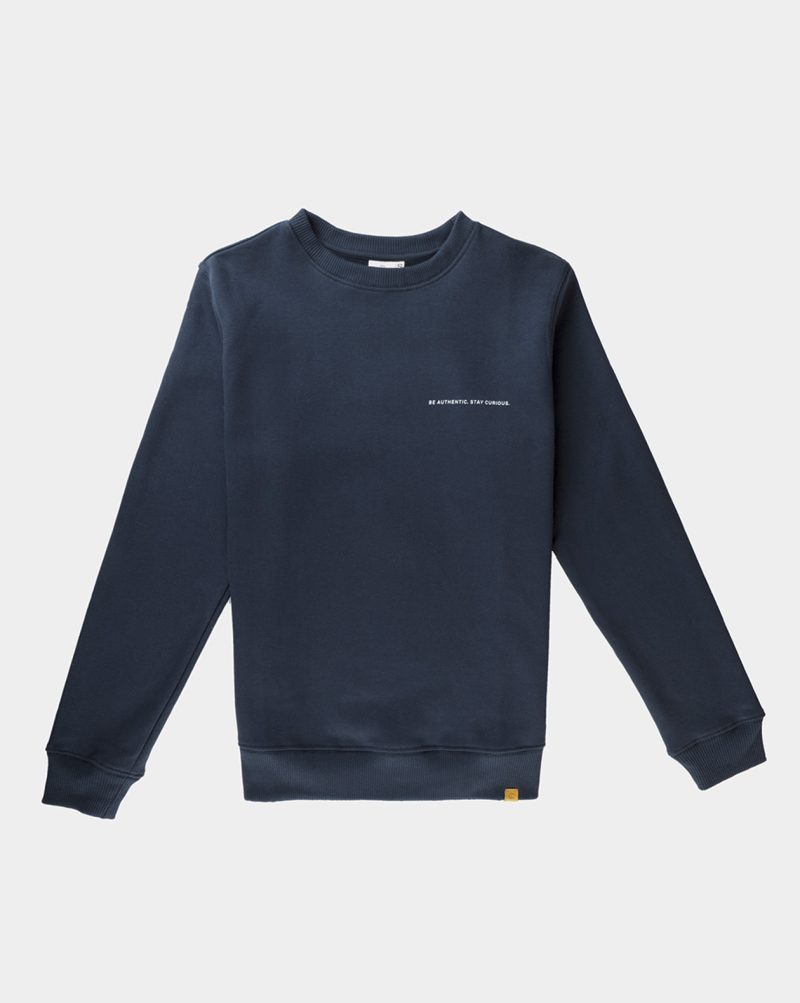 organic cotton sweatshirt blue